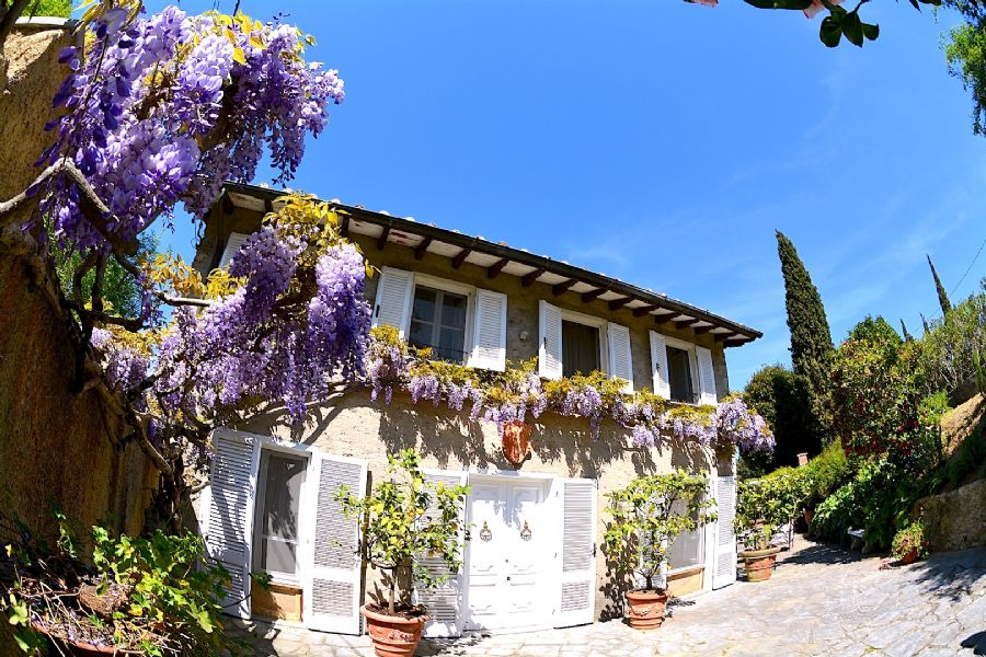 Villa for sale in the hills of Versilia with panoramic pool and garden : Outside view