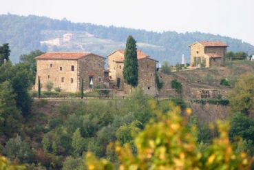 Farmhouse in Chianti area : rustic  for sale  Chianti